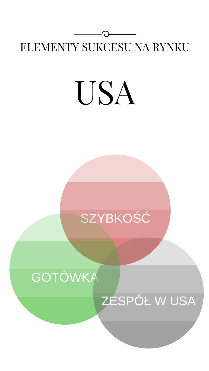 pomysł na biznes w USA